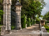 vizcaya-gardens-path_hdr_w | Naples Photographer Lacie Oakey